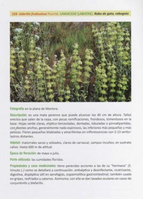 Pagina-libro--Plantas