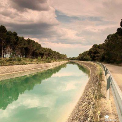Imagen-canal