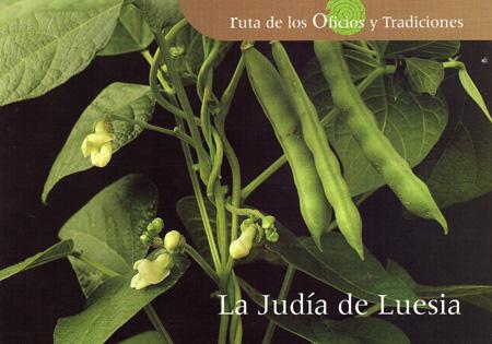 judias167.jpg